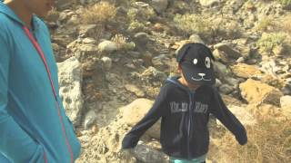Agua Caliente County Park | Desert Camping | Hiking