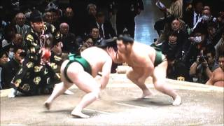 SUMO Jan.Stage 1day 平成29年大相撲初場所 初日 2017年1月8日.