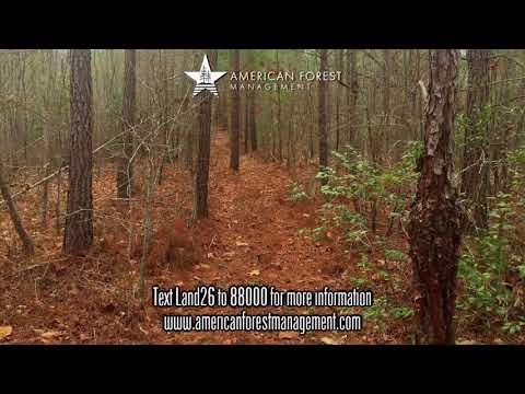 Haithcock Tract 71 Acres Harnett County , NC