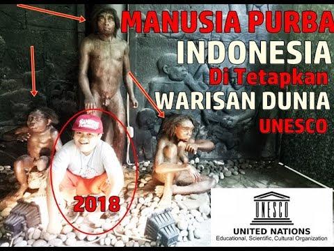 berikut WUJUD MANUSIA PURBA INDONESIA Ditetapkan Situs Warisan Dunia Oleh UNESCO Part 5