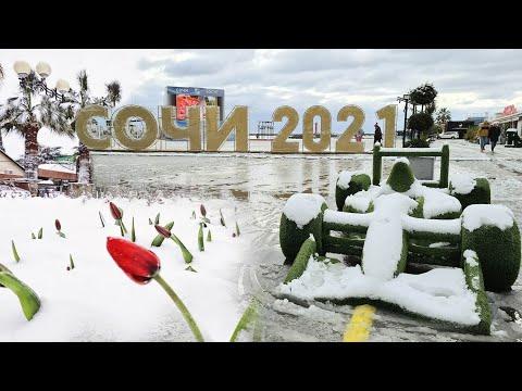 Самый сильный снегопад в Сочи за 10 лет, 19-21 февраля, зима 💥 Влог Дом у Моря