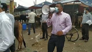 গরুর হাটে ভোক্তা অধিদপ্তরের তদারকি অভিযান    DNCRP MARKET MONITORING