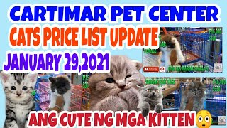 CARTIMAR PETSHOP MANILA PHILIPPINES CATS FOR SALE W/BREED AND PRICE UPDATE 013021.vlog#137