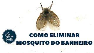 COMO ELIMINAR O MOSQUITO DO BANHEIRO