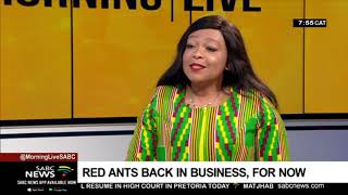 Red ants back in business, for now