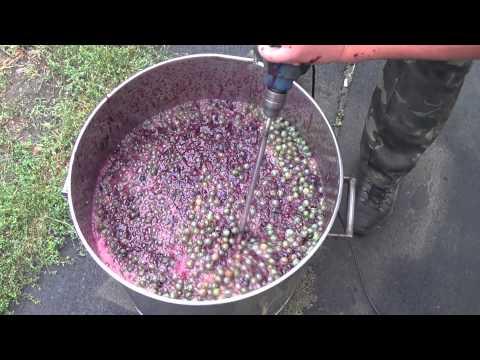 Как выдавить сок из винограда в домашних условиях