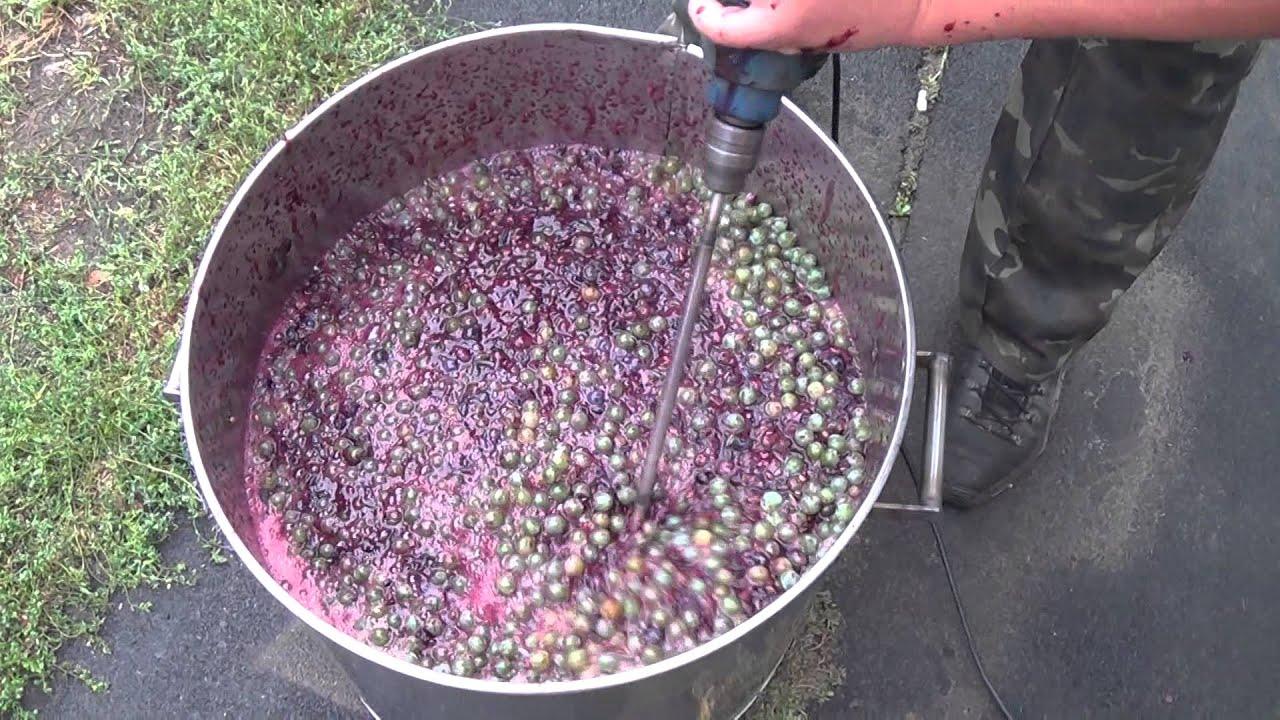 как выжать сок из винограда