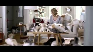 Taylor Swift   Kittens   Diet Coke   Commercial Ad