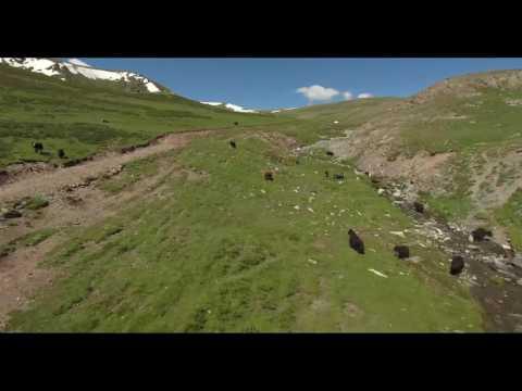 DJI Phantom 4 aerial video over Mongolian mountains