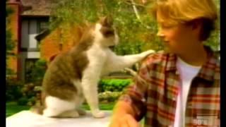 McDonalds Kid's World Talking Animals Commercial 1997