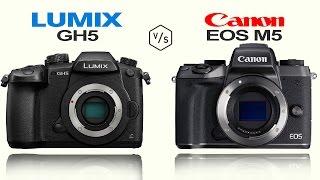 Panasonic LUMIX GH5 vs Canon EOS M5