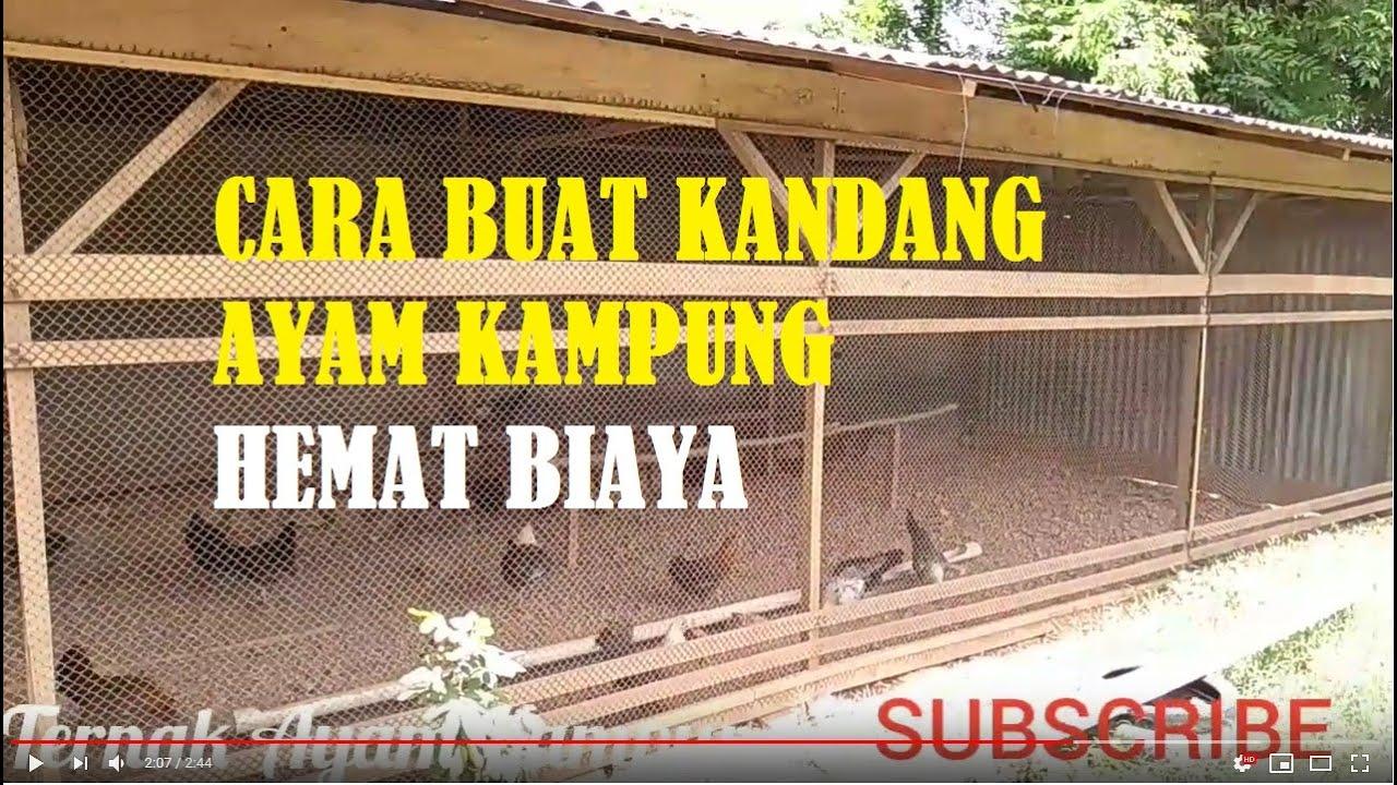 Cara Buat Kandang Ayam Kampung Petelur Hemat Biaya Farm Youtube Cara membuat kandang ayam kampung