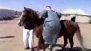 Fat Arab Makes a Ridiculous Attempt to get on a Horse-Funny