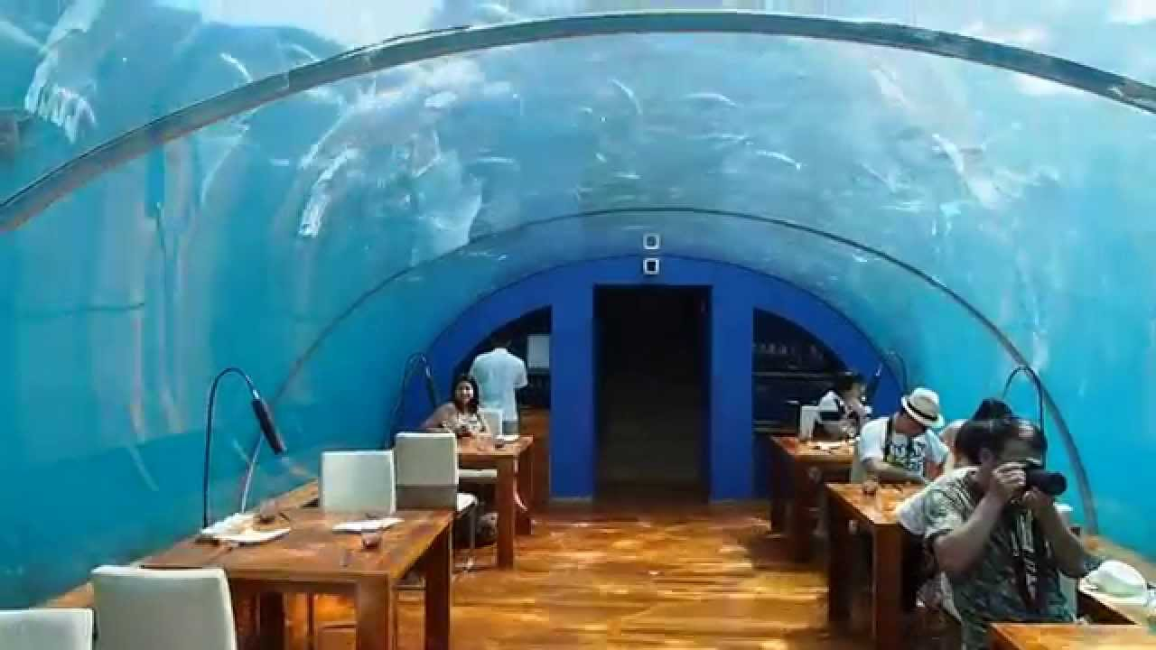 Walk through of Ithaa Undersea Restaurant at Conrad ...