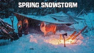 Camping in a Spring Snowstorm with My Dog