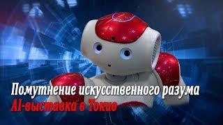 Помутнение искусственного разума, помидоры, кепка и очки - AI-выставка в Токио