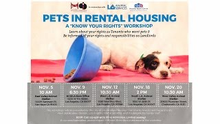 """A """"know your rights"""" workshop for pets in rental housing"""