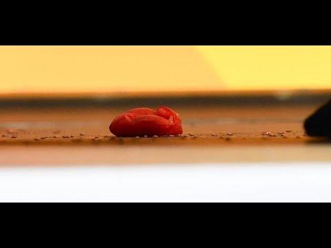 Heidelberg: Angela Merkel bei Wahlkampfauftritt mit Tomaten beworfen