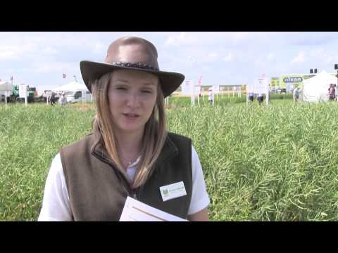 Caroline Nicholls, Research and KT Manager HGCA