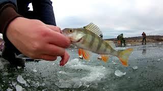 Зимняя рыбалка Первый и опасный лёд Жор окуня на мормышку