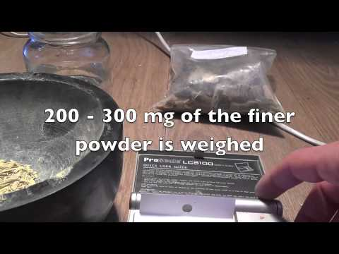 Preparation of African Dream Root (Silene capensis)