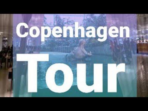24 hrs in Copenhagen Denmark   CPH   Travel Guide