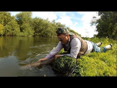 Avon Salmon On The Devon Minnow