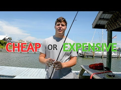 Should You Buy A Cheap Or Expensive Rod For Inshore Fishing