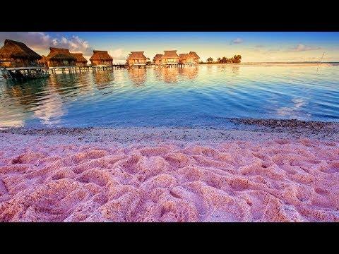 गोवा-के-ये-दिन-हमेशा-याद-करोगे|-why-is-goa-a-perfect-holiday-destination|-candolim-beach-goa|goa
