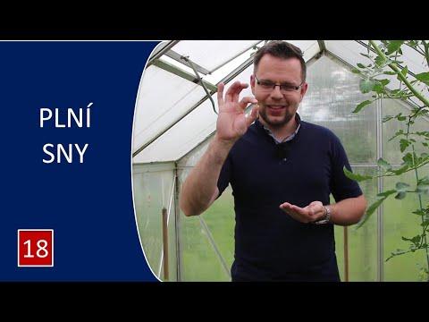 Nedělní kázání pro děti | PLNÍ SNY | P. Roman Vlk