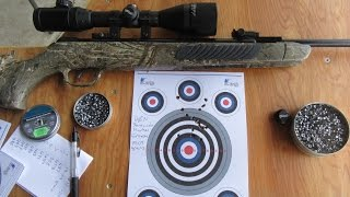 Pellet group testing with the AGS SPR10 25 yards and beyond