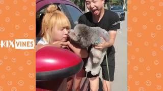 Funny videos 2018 ✦ Funny pranks try not to laugh challenge P32