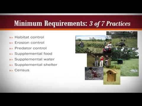 Wildlife Management - An Attractive Alternative To Traditional Ag