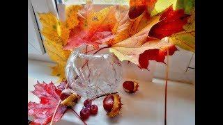 Прощальная красота осени Видеозарисовка  Farewell autumn beauty Video
