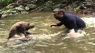 Mama Bear Pleads To Man To Save Her Drowning Cubs