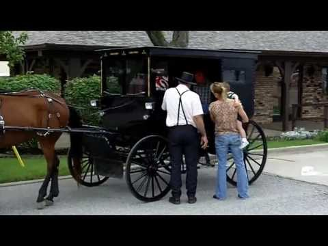 The differences between the amish and