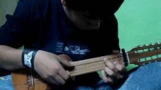 (15) SOLO kjarkas (cover charango)