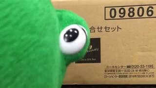 株主優待 日本製紙 2019年度
