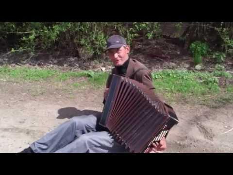 приколы пьяных гармонистов видео