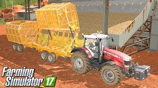 Trzcina do cukrowni - Farming Simulator 17 [PLATINUM]   #40