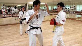 Ashihara Karate: Sabaki (Action & Reaction)