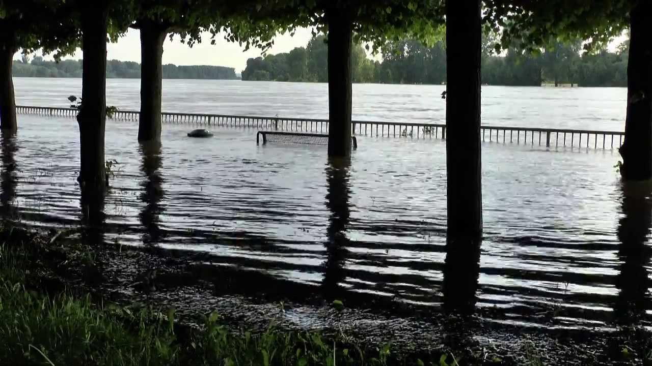Hochwasser Köln