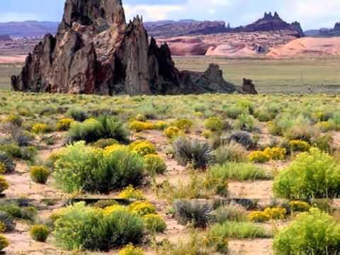 Природная зона степей