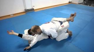 Тренировки по Бразильскому Джиу Джитсу (BJJ) , Киев