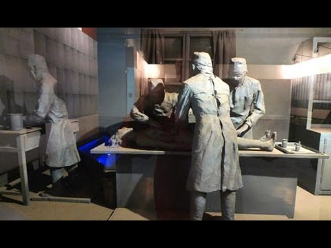 A history of war-time horror, Unit 731