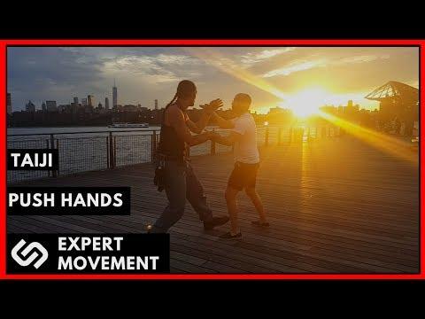 Push Hands Philosophy & Practice  ☯ Modern Combat Taiji Chuan