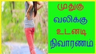 முதுகு வலிக்கு உடனடி நிவாரணம் .Tamil Health and Beauty Tips | Tamil Health Tips | JVN Health Tips