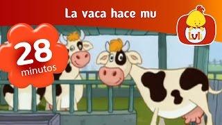 La vaca hace mu- Capítulo especial de media hora  | Cartoon para Niños -Luli TV thumbnail