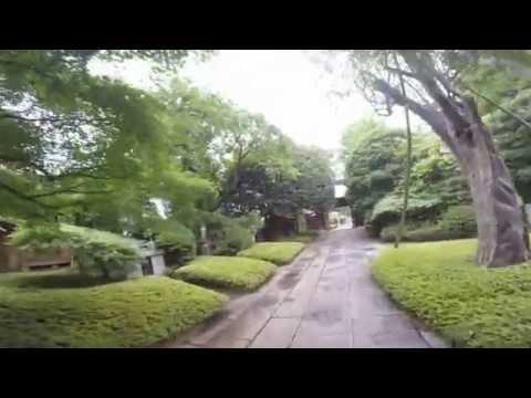 TOKYO,TOKYO,TOKYO !(798)Saginomiya [Nakano-ku] vol.1 〜鷺宮八幡神社へ参拝してきました!
