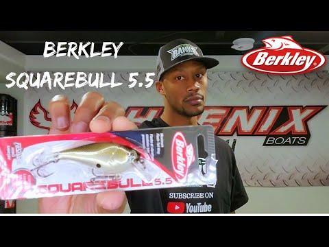 TTD: 67 | Berkley Squarebull 5.5 Review